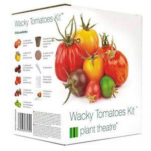 Plant Theatre Kit de Tomates Farfelues- 6 variétés insolites à cultiver soi-même - Idée cadeau de la marque Plant Theatre image 0 produit