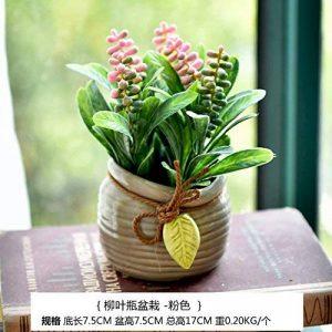 plante graminée haute TOP 6 image 0 produit