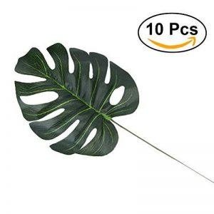 plante intérieur palmier TOP 4 image 0 produit