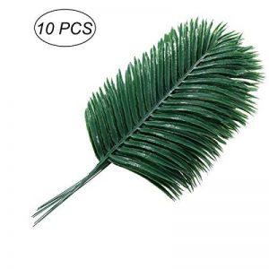 plante intérieur palmier TOP 5 image 0 produit