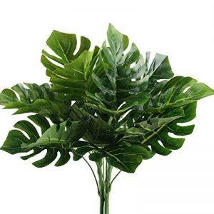 plante intérieur palmier TOP 8 image 0 produit
