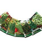 planter ciboulette TOP 9 image 1 produit