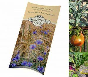 planter les semis de tomates TOP 2 image 0 produit