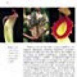 Plantes carnivores comment les choisir et les cultiver facilement de la marque image 2 produit