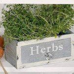 Potager: Boîte aux herbes pour votre jardin d'herbes aromatiques - Jardinière en bois dans le design des tiroirs, 22 x 12 x 12 cm, aspect vintage de la marque Hoff Interieur image 1 produit