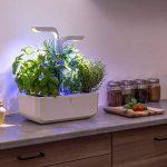 Potager Véritable® CLASSIC - Jardin autonome d'intérieur Made in France (Blanc) de la marque Véritable image 1 produit