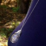 Pour la fête cadeau Collier/Pissenlit Wish Collier/véritable Graines de pissenlit Collier de fiole en verre/cadeau de demoiselle d'honneur de la marque Huang Lihao image 1 produit