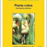 pousse plante carnivore TOP 1 image 4 produit