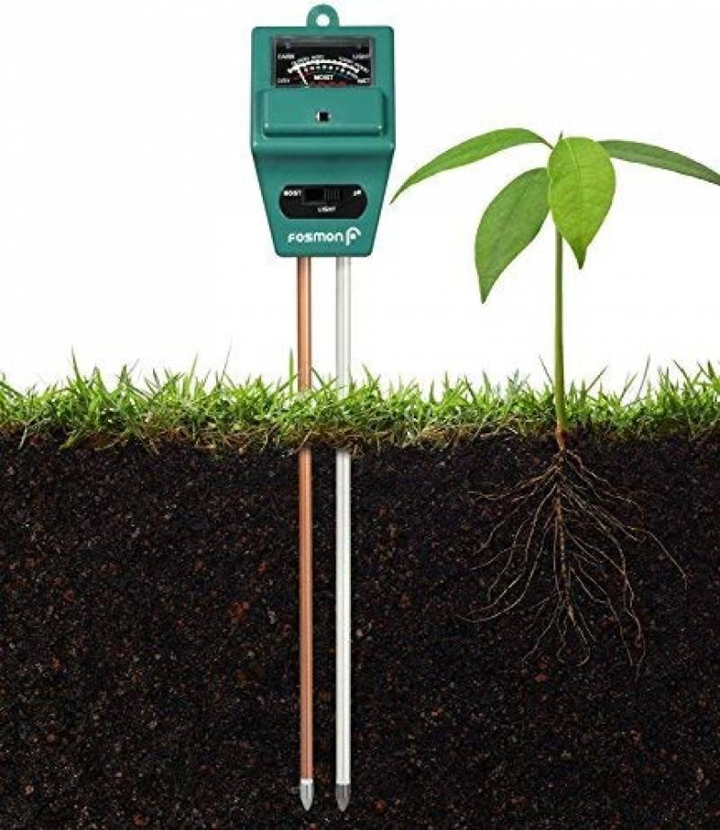 Quand planter les legumes : faire des affaires pour 2020   Top Plantes