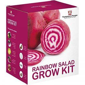 RAINBOW salade graines Kit en culture boite cadeau par THOMPSON & MORGAN 5 Crisp & multicolore variétés de salade pour Grow ; Laitue, OIGNON DE PRINTEMPS,radis, BETTERAVE & concombre graines de la marque Thompson-Morgan image 0 produit