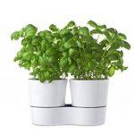Rosti Mepal 108616030600 Pot Hydro pour Herbes Aromatiques Twin Mélamine Blanc 27,3 x 13,7 x 22 cm de la marque Rosti-Mepal image 1 produit