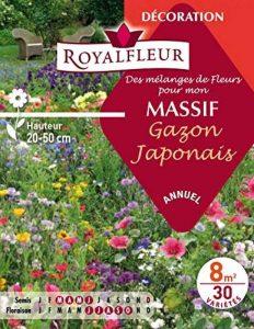 Royalfleur PFRE08351 Graines de Mélange de Fleurs mon Massif Gazon Japonais 8 m² de la marque Royalfleur image 0 produit