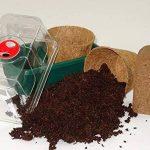 SAFLAX - Kit de culture - Dionée attrape-mouche - 10 graines - Dionaea muscipula de la marque SAFLAX image 1 produit