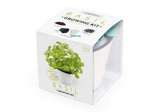 salade avec graines TOP 12 image 0 produit