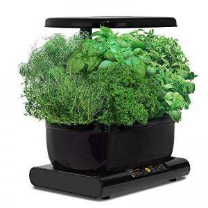 salade avec graines TOP 6 image 0 produit