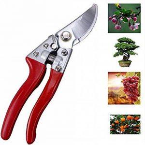 Sécateur - Smaier Outil de jardin - Les ciseaux pour le jardinage polyvalent, ciseaux avec des lames tranchantes, taille-haies, cisailles de jardin et de l'acier. de la marque Smaier image 0 produit