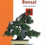Seedeo Lot de Bonsai Kit de semis pour érable Extrême-Orient Deluxe (Rouge, Blanc, Bleu de pluie mûrier) de la marque Botanische Juwelen image 5 produit