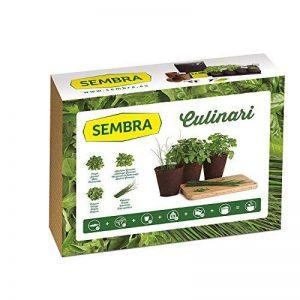 SEMBRA - Kit à faire pousse - Culinari de la marque Sembra image 0 produit