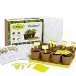 SEMBRA - Kit à faire pousse - Culinari de la marque Sembra image 1 produit