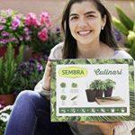 SEMBRA - Kit à faire pousse - Culinari de la marque Sembra image 3 produit