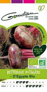 semences potageres bio TOP 0 image 0 produit