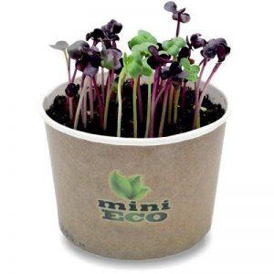 semences potageres bio TOP 2 image 0 produit
