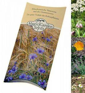 semis plantes aromatiques TOP 5 image 0 produit