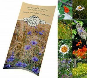 semis plantes aromatiques TOP 8 image 0 produit