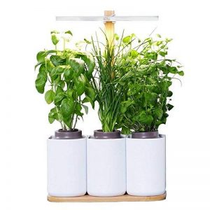 Smart Lilo, le potager d'intérieur autonome Prêt à Pousser - Cultivez toute l'année simplement - inclus basilic, menthe et ciboulette de la marque Prêt à Pousser image 0 produit