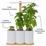 Smart Lilo, le potager d'intérieur autonome Prêt à Pousser - Cultivez toute l'année simplement - inclus basilic, menthe et ciboulette de la marque Prêt à Pousser image 3 produit
