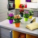 Soendgen Pot de fleurs en céramique, Dallas Esprit, Argile, anthracite, 24 x 24 x 24 cm de la marque Soendgen Keramik image 1 produit