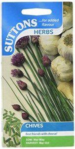 Suttons Seeds 164596 Graines de ciboulette de la marque Suttons Seeds image 0 produit