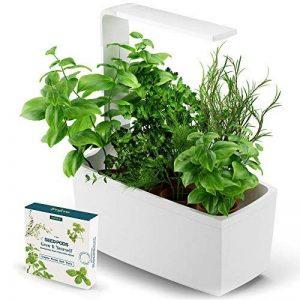 Tregren T6 Potager d'intérieur Connecté 6 plantes + Kit 4 capsules de graines et 2 mois de nutriments - Kit prêt à pousser et Jardinière Autonome pour herbes aromatiques, petits légumes - Blanc de la marque Tregren image 0 produit