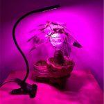 Usine LED Light-Promouvoir l'usine grandir avec la fonction de synchronisation, Hydroponics Greenhouse Lampe de jardin Plant Croissance et fleur Ordinateurs Bureau Bureau Éclairage de tâche USB Lampe de chevet de la marque Lumière de la plante image 1 produit