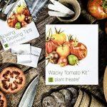 variété tomate TOP 3 image 2 produit