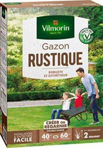 Vilmorin 4460414 Gazon Rustique, Vert, 1 kg de la marque Vilmorin image 0 produit
