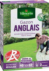 Vilmorin 4462714 Gazon Anglais, Vert, 1 kg de la marque Vilmorin image 0 produit
