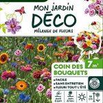 Vilmorin 5858007 Pack de Graines Mélange de Fleurs Coin des Bouquets 7 m² de la marque Vilmorin image 1 produit
